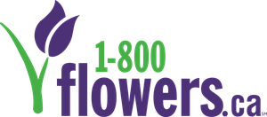 1-800-Flowers.ca Coupons and Promo Codes
