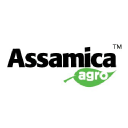 assamicaagro.in Coupons and Promo Codes