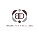 blessings-in-disguise.com Coupons and Promo Codes