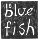 Blue Fish Company Coupons and Promo Codes