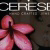 Cerese Coupons and Promo Codes