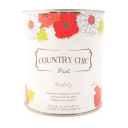 Country Chic Paint Coupons and Promo Codes