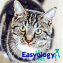 Easyology Pets Coupons and Promo Codes