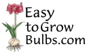 easytogrowbulbs.com Coupons and Promo Codes
