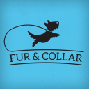 furandcollar.com Coupons and Promo Codes