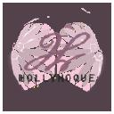 hollyhoque.com Coupons and Promo Codes