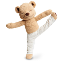 Meddy Teddy Coupons and Promo Codes
