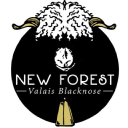 theblacknosesheep.com Coupons and Promo Codes