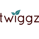 twiggz.ca Coupons and Promo Codes